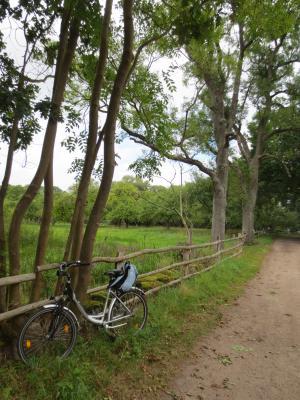 Biosphärenreservatsamt Schaalsee Elbe_Foto: Elke Dornblut