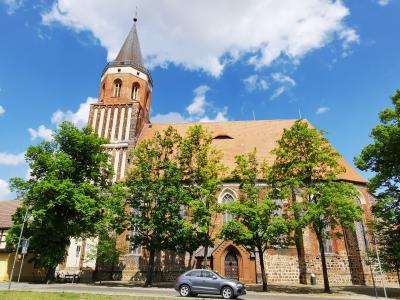Im 13. Jahrhundert begann der Aufbau der spätgotischen dreischiffigen Stadtkirche, die einen Vorgängerbau aus Feld- und Raseneisensteinen ersetzte. Um 1480 wurde der Kirchturm angebaut. Foto: Stadt Calau / Jan Hornhauer