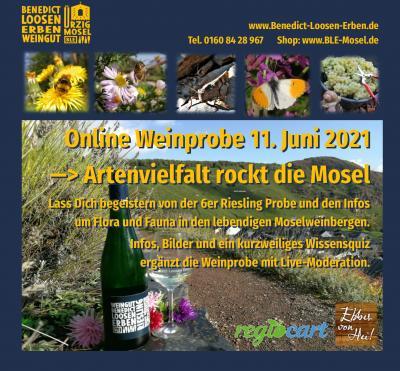 Online Riesling Weinprobe Artenvielfalt rockt die Mosel