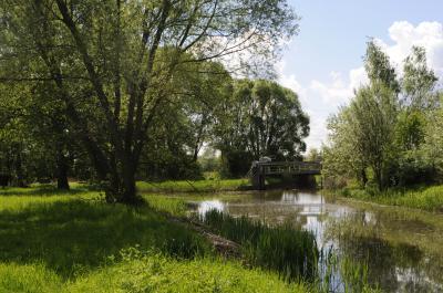 Die Kleine Elster bei Doberlug-Kirchhain, Foto C.Hoffmann