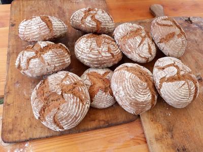Brot aus dem Holzbackofen  Foto- Museum OSL/ Ehrhardt