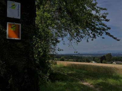 Blick in das Kinzigtal - Foto von Michael Stange