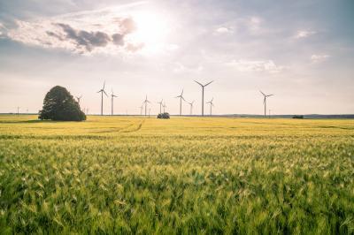 Windkrafträder in der Barnimer Feldmark (Fotograf: Lutz Weigelt)