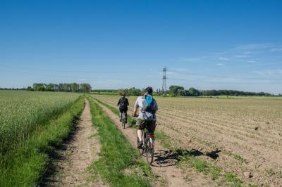 Radfahrende in der Barnimer Feldmark (Fotograf: Lutz Weigelt)