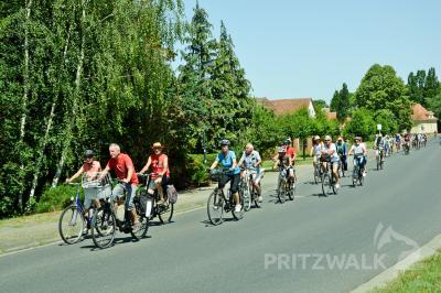 Bei strahlendem Sonnenschein führte die Sommertour 2019 nach Seefeld, wo es ein buntes Programm für die Gäste gab. Foto: Andreas König/Archiv